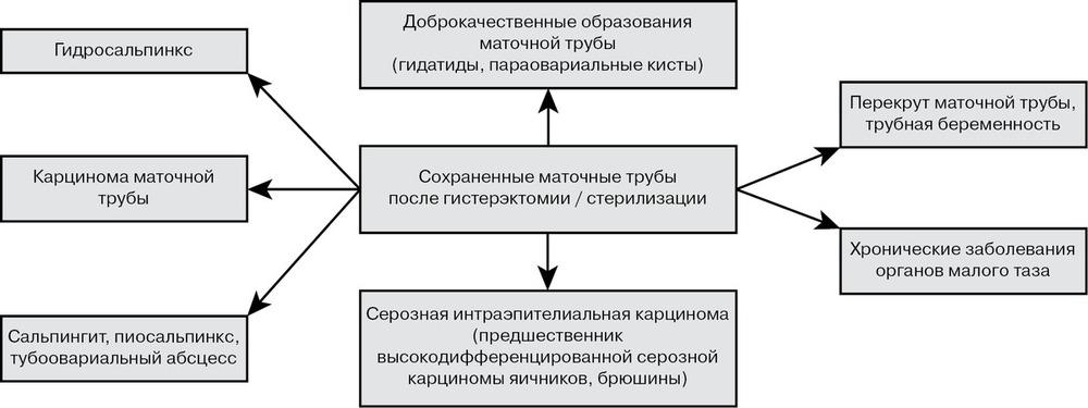 Новый взгляд на профилактическую тубэктомию - Российский вестник ...